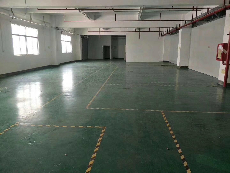 松岗超靓厂房出售建筑面积24500平