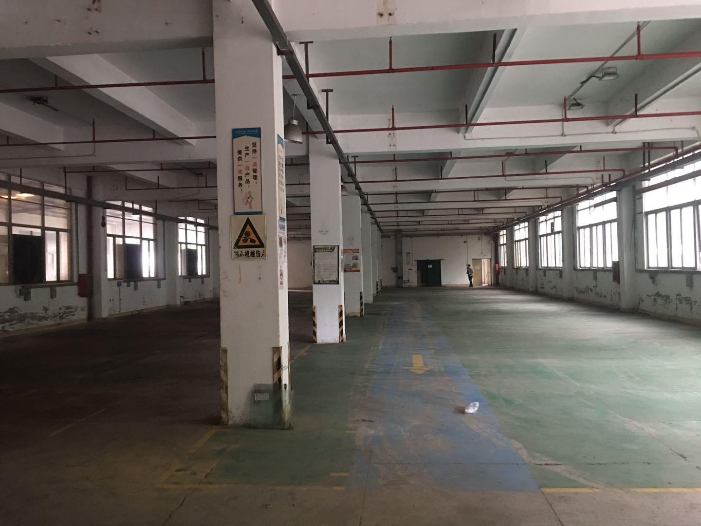 坪山新出工业园独栋厂房,面积4648平方,单层1162平分租