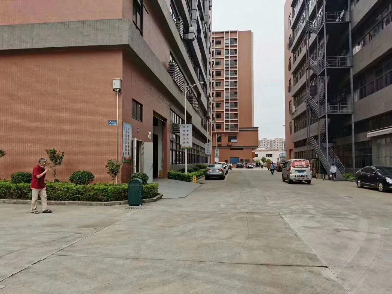 九江镇家具厂房招租8000平方有现成环评,可分租