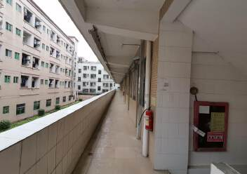 龙华大浪商业中心附近两栋宿舍楼实际面积出租共4800平35块图片3