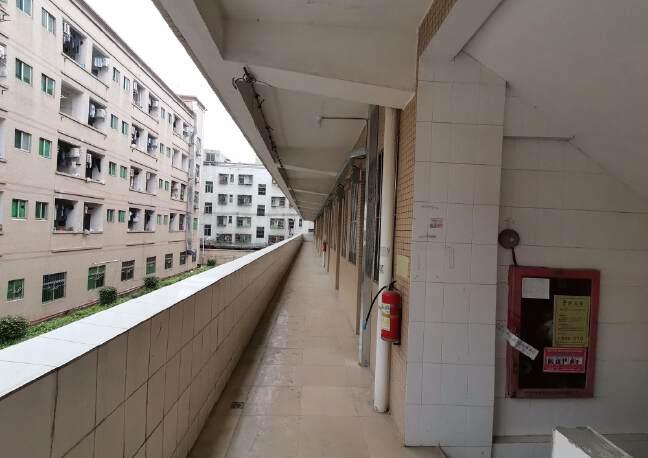 龙华大浪商业中心附近两栋宿舍楼实际面积出租共4800平35块