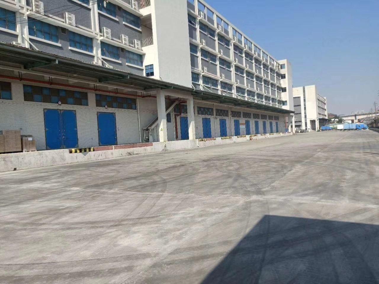 大鹏葵涌新出原房东红本6米高一楼5800平带卸货平台厂房出租