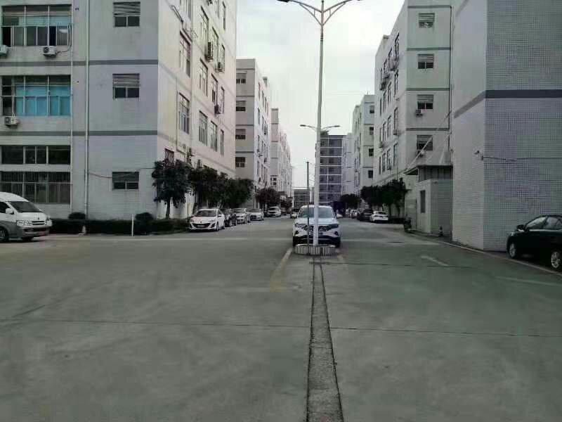 长圳新出红本厂房仓库大量100到1万平出租可分租空地大车位足