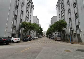 深圳龙华大浪商业中心附近沈海高速路口旁精装修办公室大气前台图片7