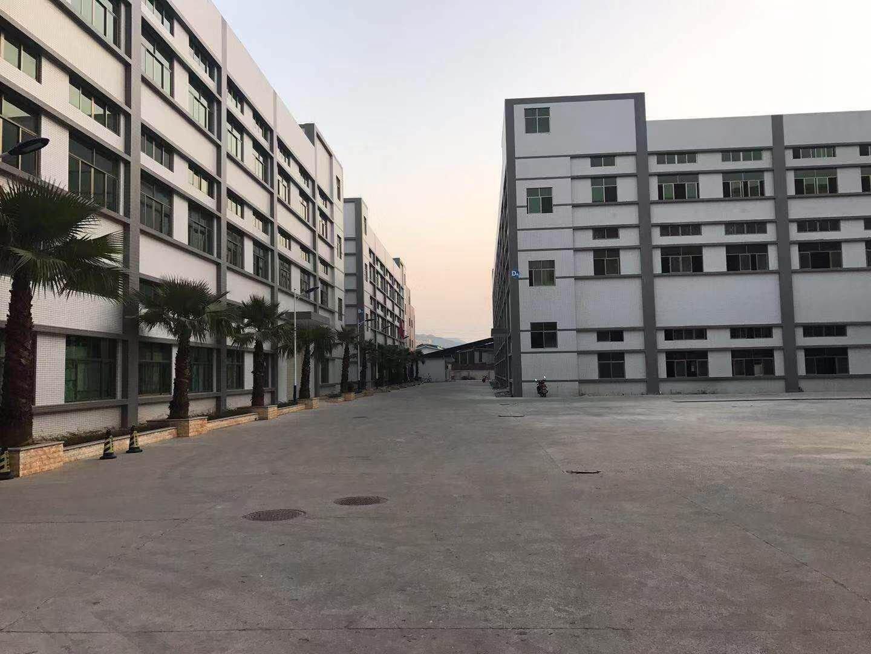 惠州泰美新出一楼标准厂房3000平方价格实惠证件齐全可分租