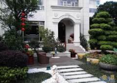 佛山市顺德区新出独栋别墅出售