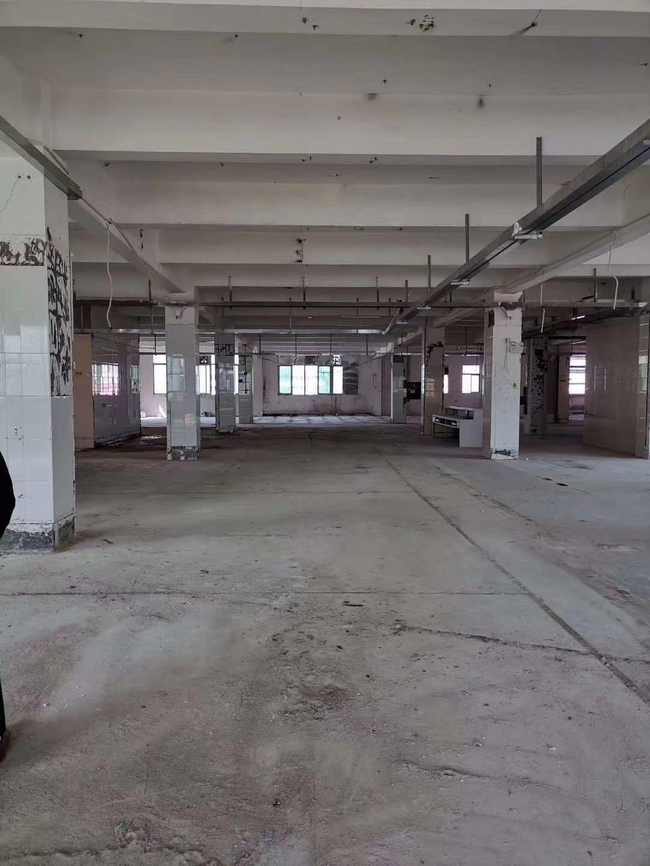 观澜原房东无公摊面积,1600平,大型工业园,园区形象非常好