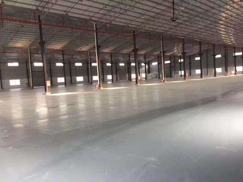 深圳仅有的钢构出让坪山11米高钢结构厂房出售 高11米