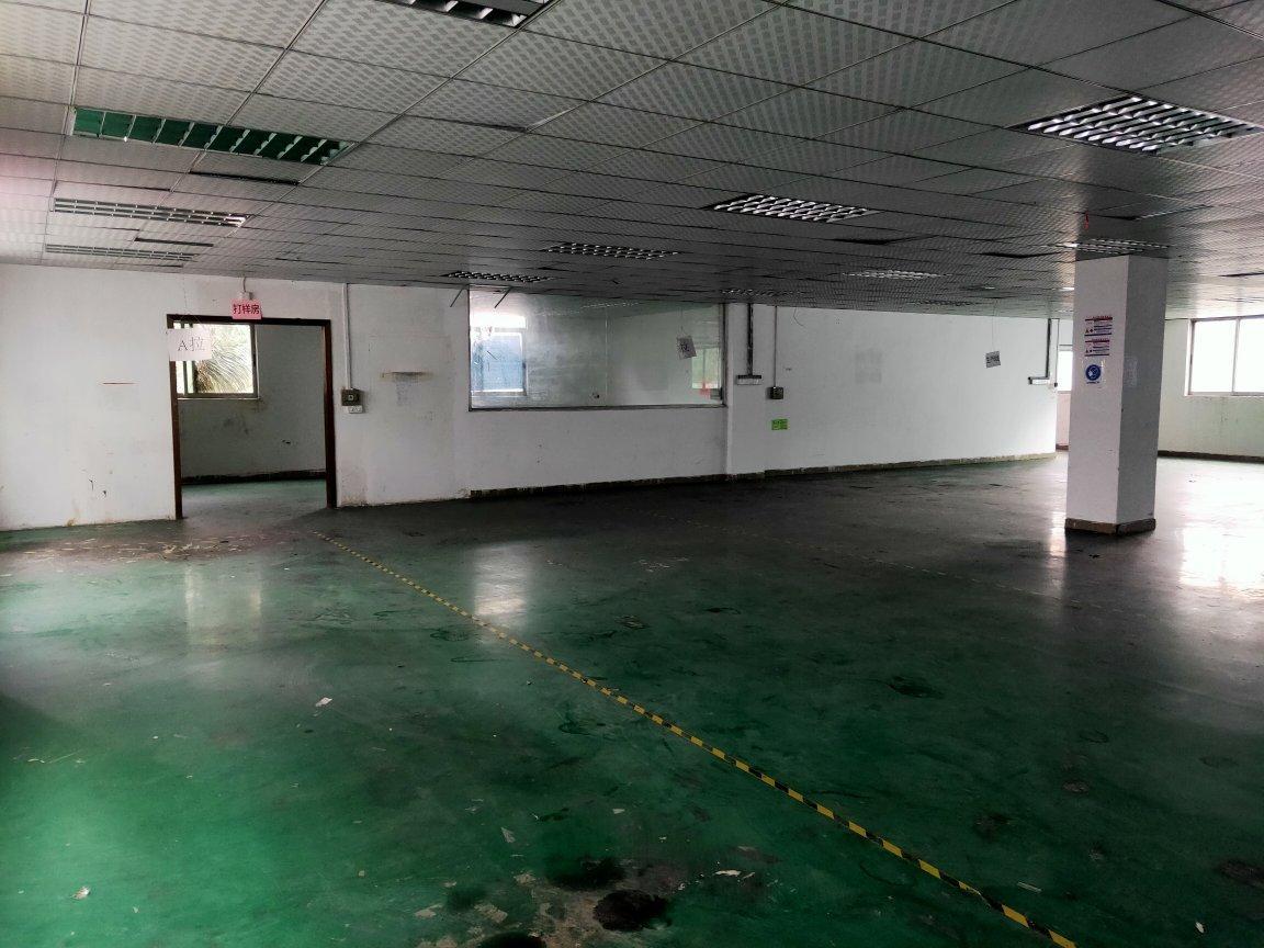 观澜福民新出一楼1500平,大小可以分租,价格18块
