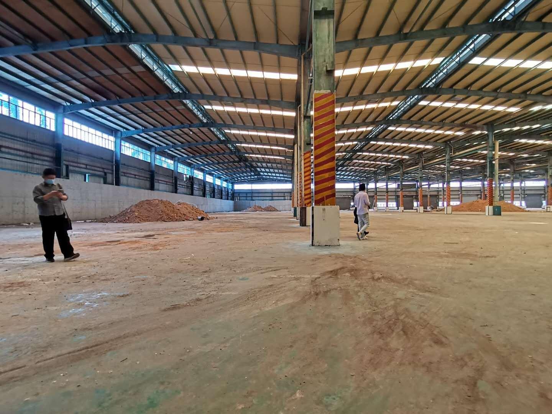带红本坪山原房东钢构厂房,13000方,有现成行吊,滴水很高