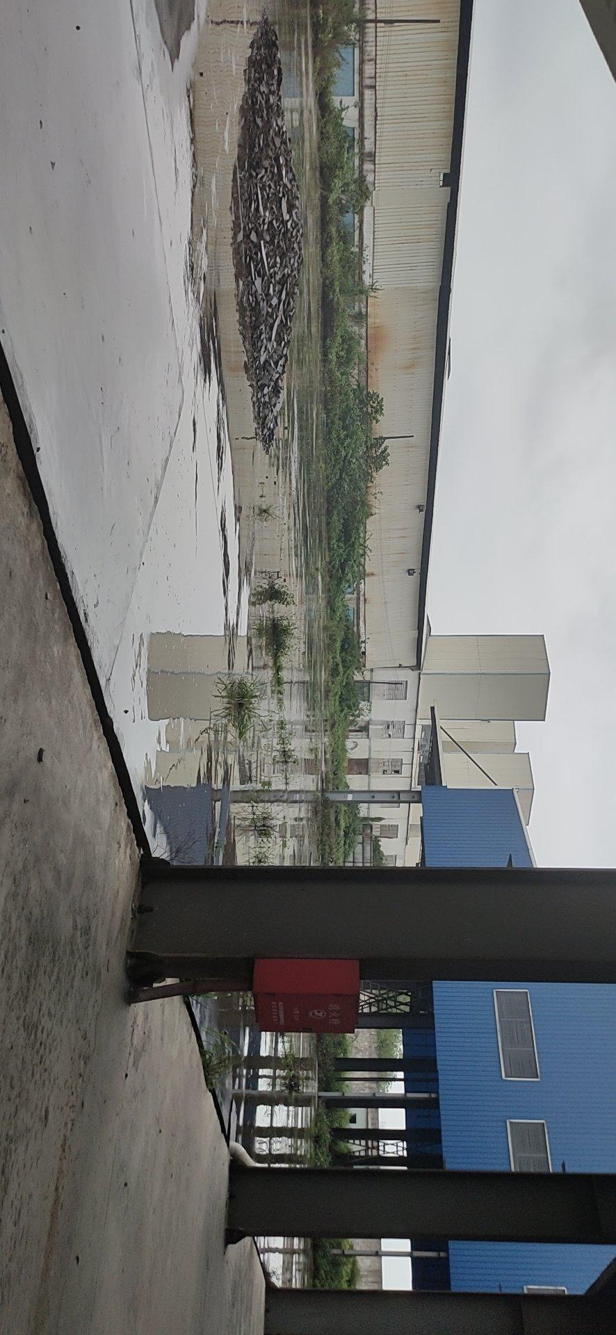 肇庆新出单一层厂房滴水12米出租