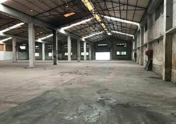 江门市蓬江区荷塘镇新出原房东单一层厂房5000平,可分租图片2