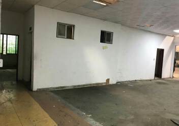 江门市蓬江区荷塘镇新出原房东单一层厂房5000平,可分租图片4
