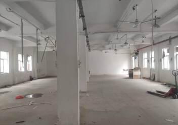 坪地龙岗大道边上新出一楼标准厂房350平图片3
