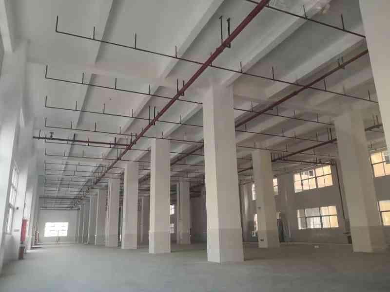 全新厂房仓库1楼出租,可办环评