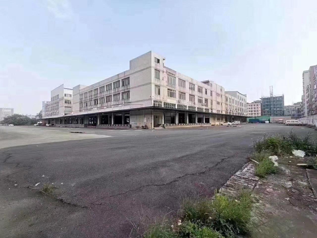 物流仓库、15000平,冷库首选。沙井平台高标仓1-2楼