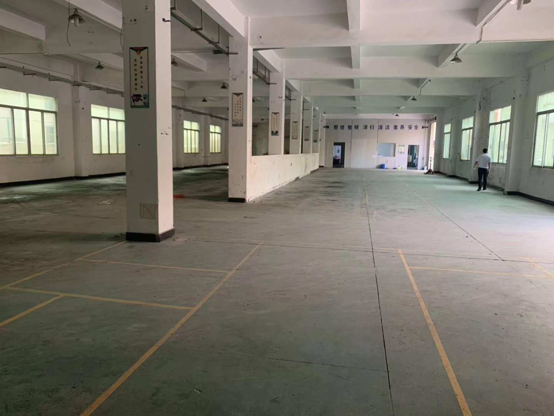 临深凤岗新出物流仓库3000平出租。