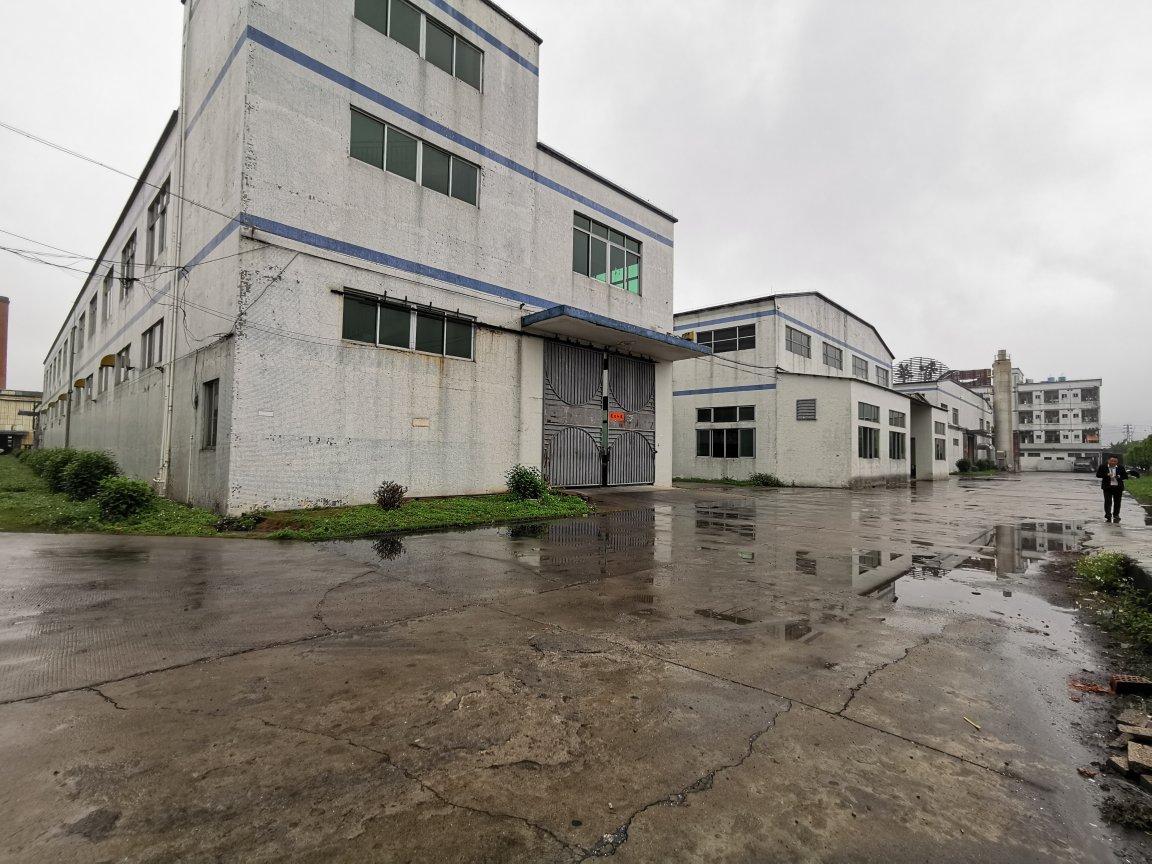 惠东县吉隆镇26000平独门独院单一层钢构厂房出租-图4