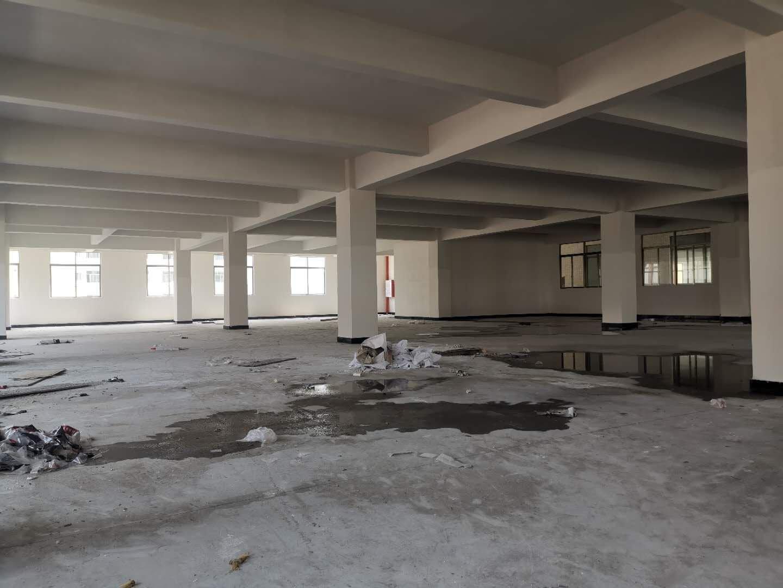中山古镇新建原房东标准厂房红本房15300方出租