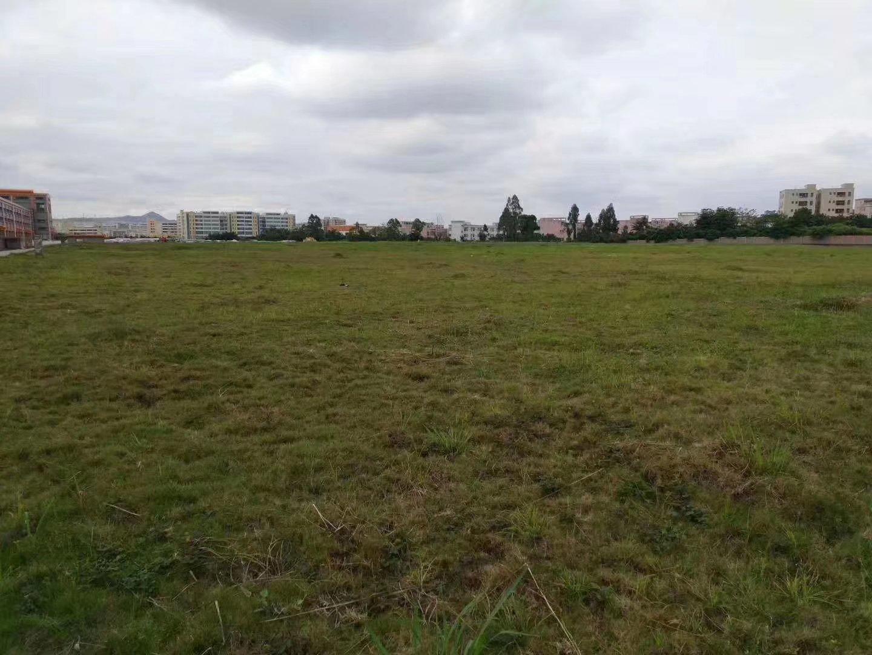 新出单一层厂房,占地11亩,建筑7000平方,售价2200万