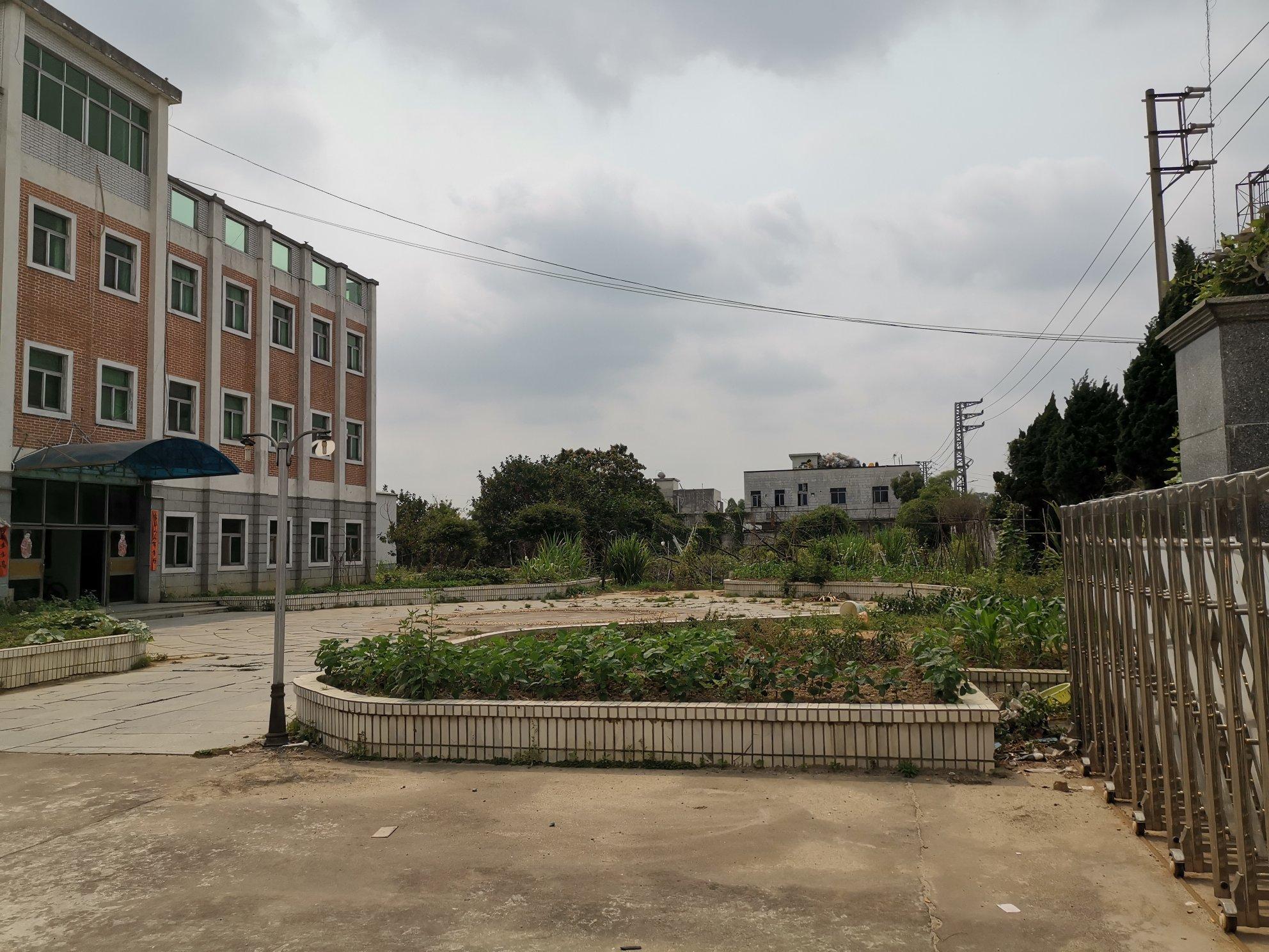 惠州占地115亩红本厂房仅售6600万,空地100亩,高速口