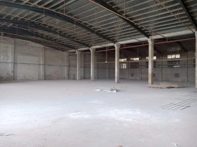 惠阳区镇隆镇钢构厂房出租独门独院2000平米