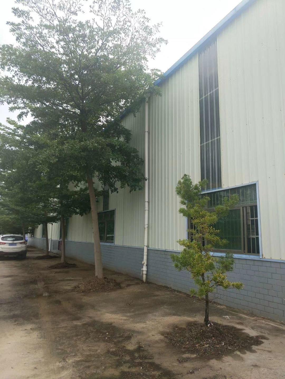 博罗钢构厂房6200平米售550万!