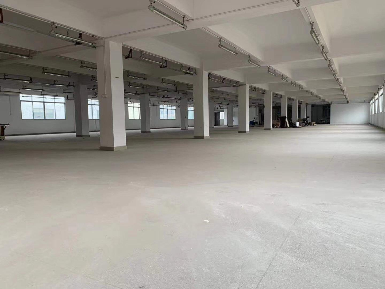 白云太和民营科技园1万平精装修电商仓库出租,可分租,只租16