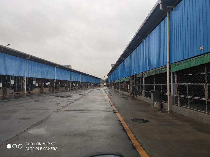 松岗高速出口25000平方独门独院钢结构仓库低价招租空地大