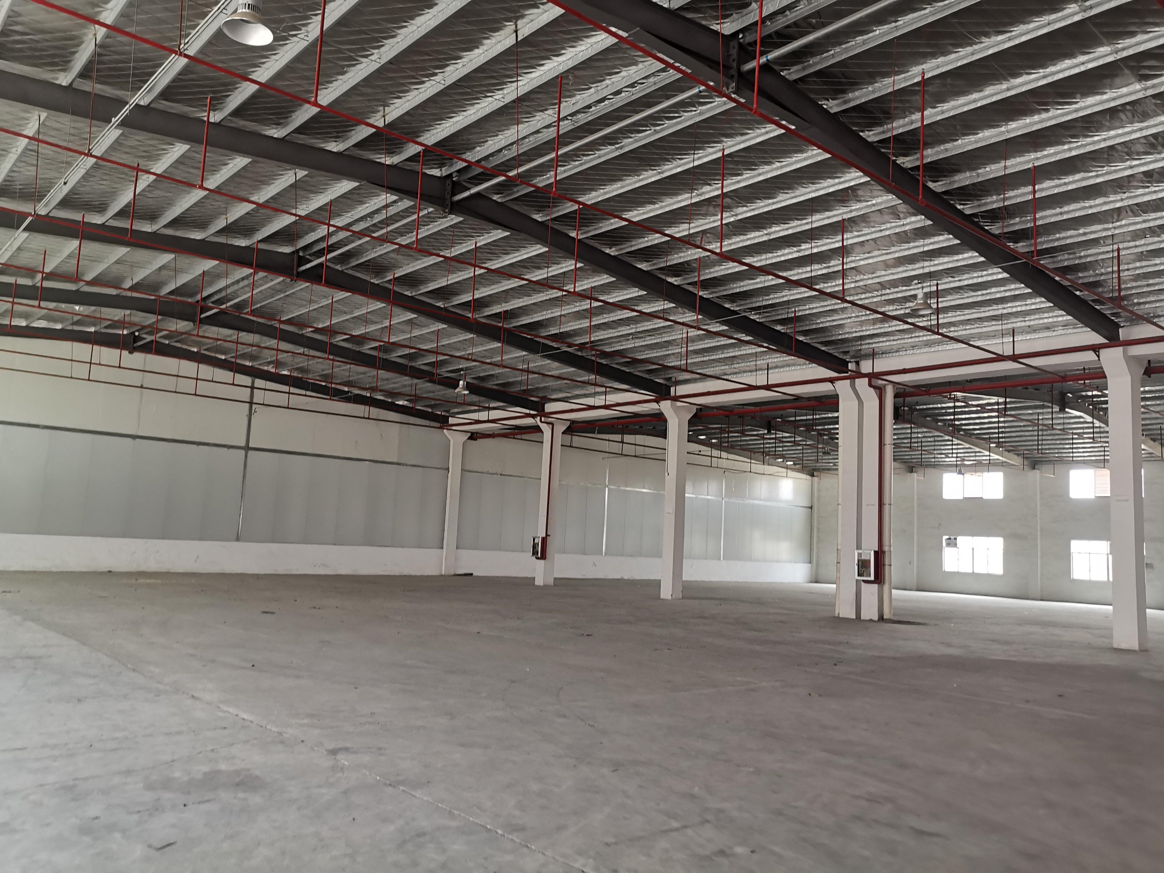 博罗钢构厂房6200平米仅售580万!