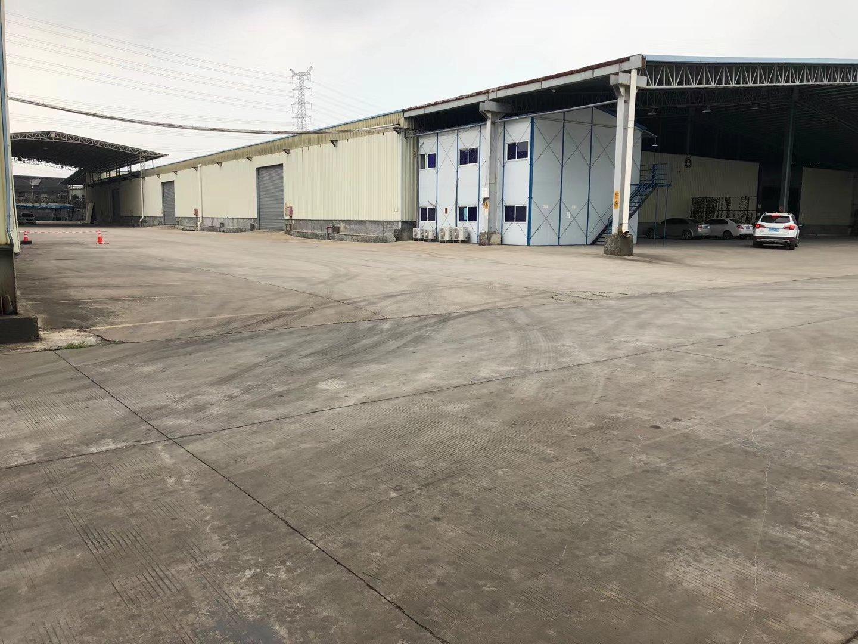 南城新出钢结构仓库18000㎡,可分租适合仓储物流冷库等