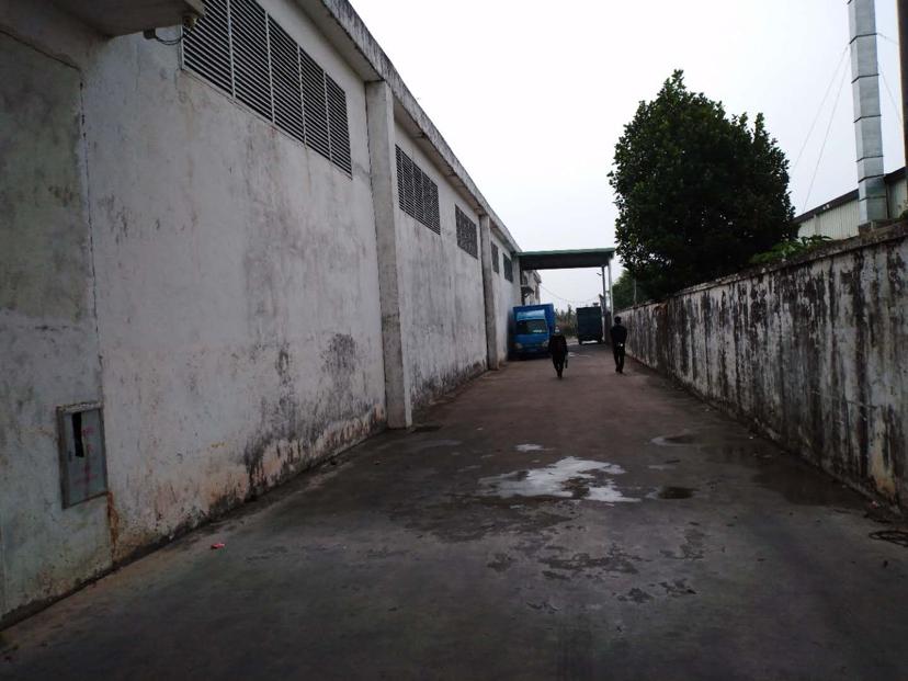 惠城区马安镇钢结构厂房原房东实际面积出租