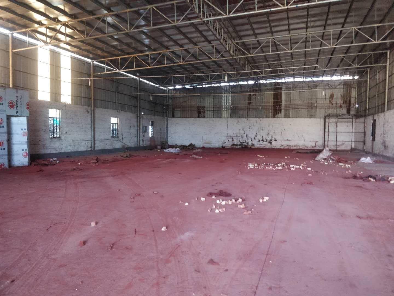 高明明城近高速工业区原业主铁皮房800平方招租可做污染行业