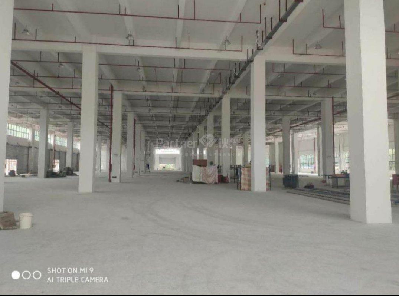 东城主干道旁28000平大型物流仓库特价出租
