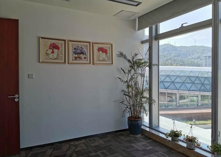 深圳布吉坂田地铁口精装修写字楼128平45元图片5