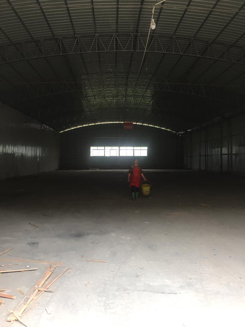 芙蓉区大汉建材附近750平米钢结构厂房出租