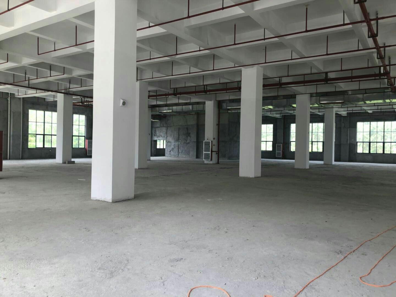 黄埔工业园区厂房可分租可办公可仓储园林式厂房形象靓丽