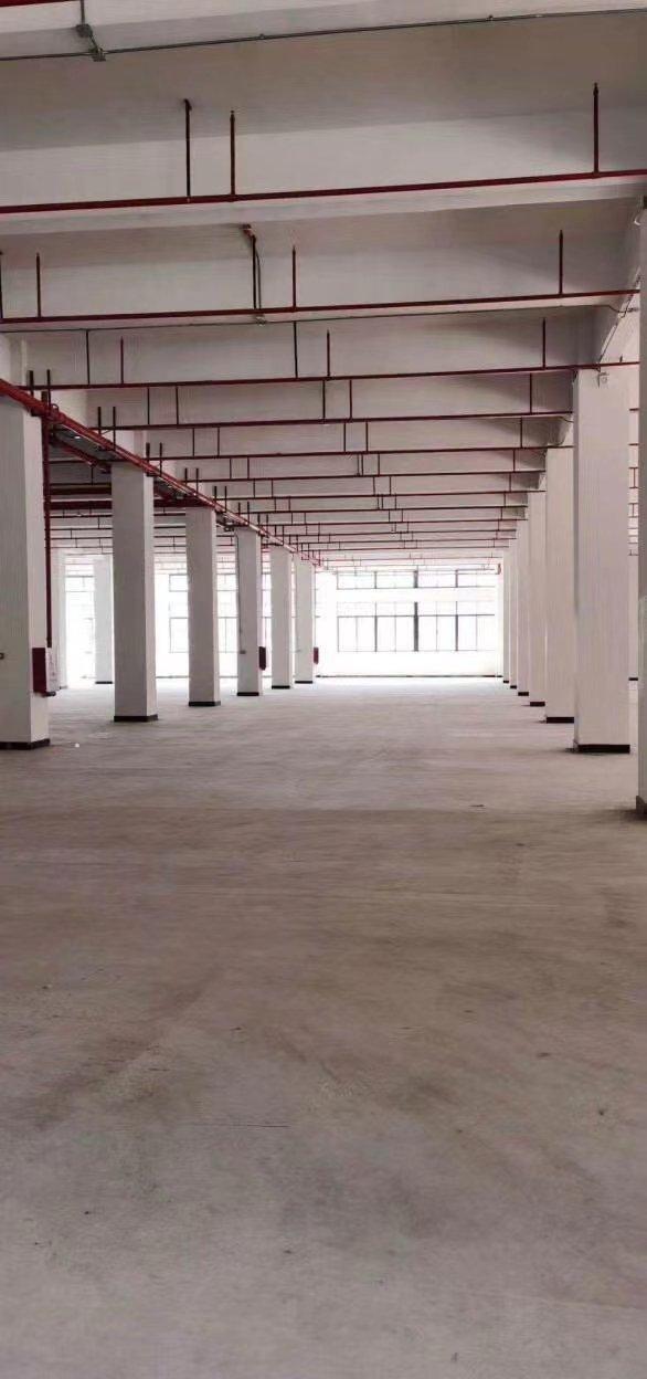 龙岗新出精装一楼仓库,层高八米