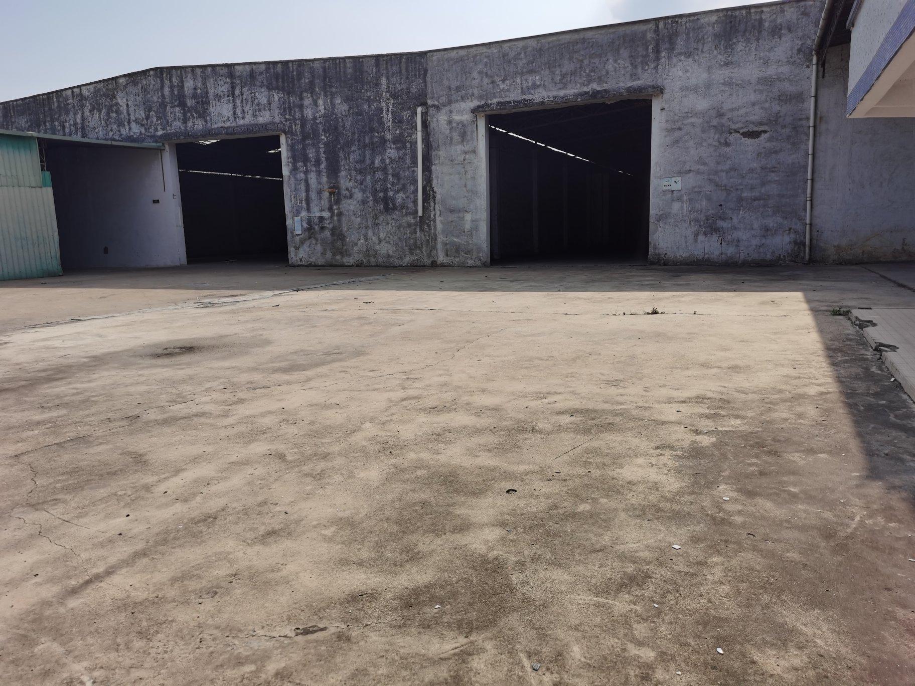 园洲镇简易砖抢到顶厂房招租,超大空地,交通便利,成熟工业区