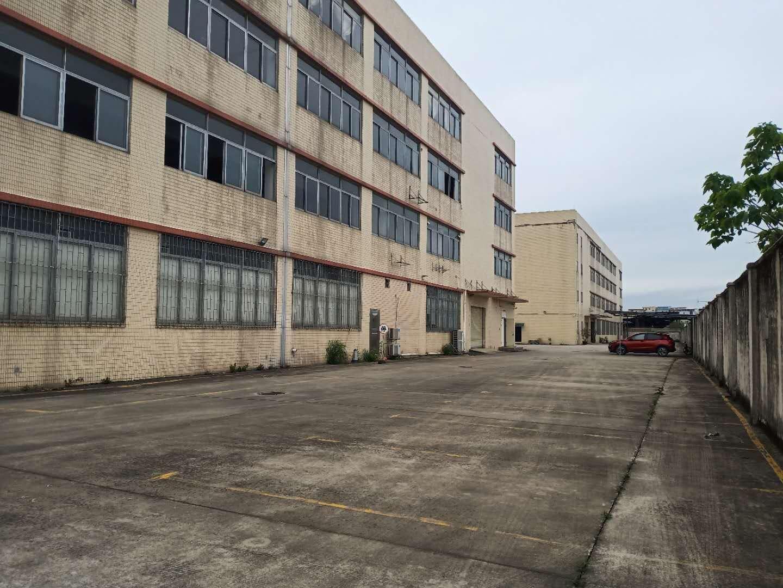 荔湾区龙溪大道园区独栋厂房4800平招租,空地超大电按需