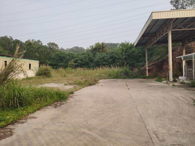 博罗县长宁镇独院钢构500㎡周边无居民