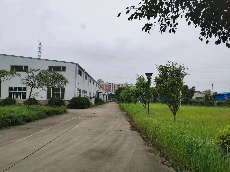 惠州市惠阳区独院单一层钢构厂房11800平方米出租