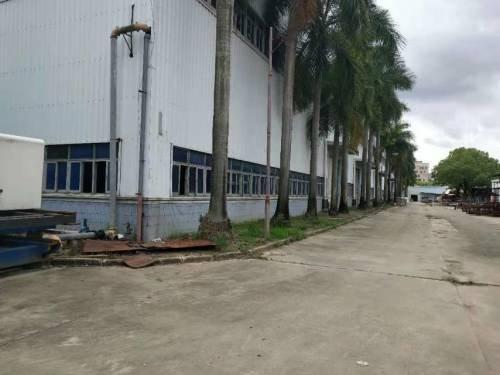 惠州市惠阳区镇隆工业区单一层钢构厂房1200㎡