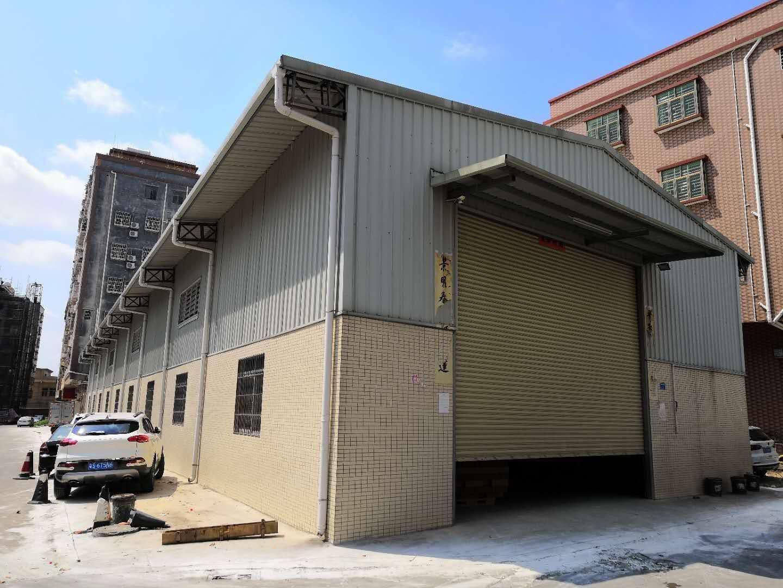 横沥镇新出独栋1100平方钢构仓库,零磨损,多门口方便装卸货