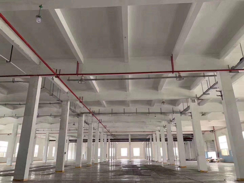 惠州大亚湾西区工业园内标准厂房一楼11500平方米厂房出租