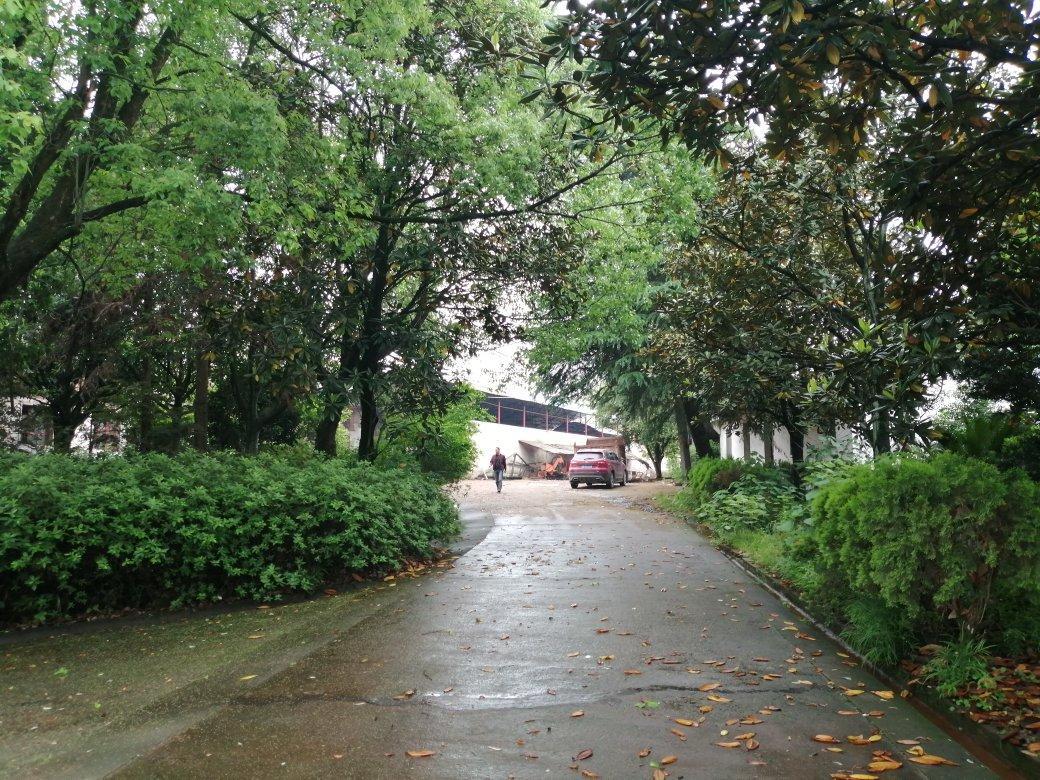 黄兴大道北,15亩独门独院; 厂房3000平米