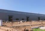 11.8m单层全新钢结构厂房,可分割独立办证。