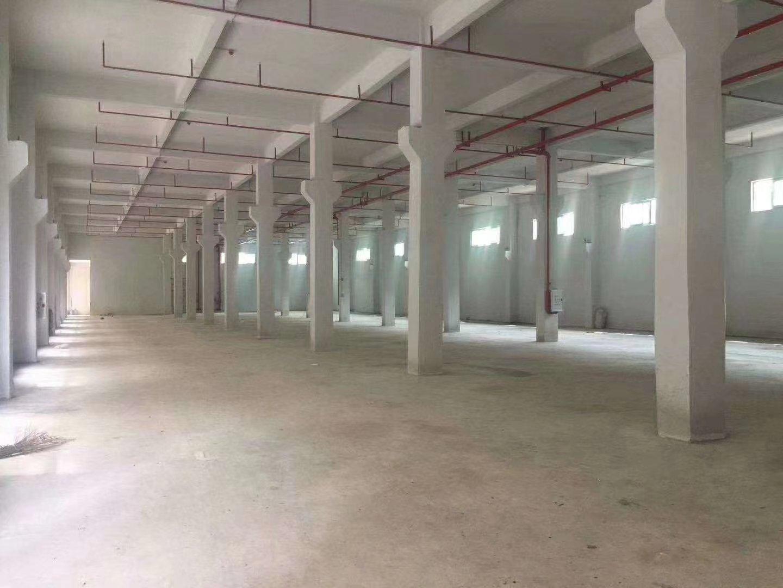 惠州市博罗单一层标准7米高厂房招租,带牛角