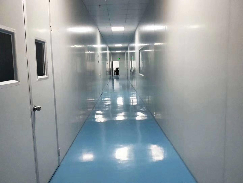 新圩镇一楼1800平米全新精装修无尘车间厂房