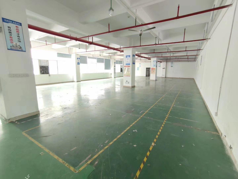 石岩水田德政路边新出楼上整层精装修2255平方厂房出租可分租-图2